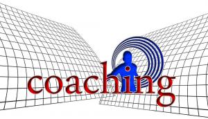 l'e-coaching par plateforme web